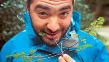Νεαρός επιστήμονας μαζεύει χόρτα στα βουνά... και τα μοσχοπουλάει στο εξωτερικό!